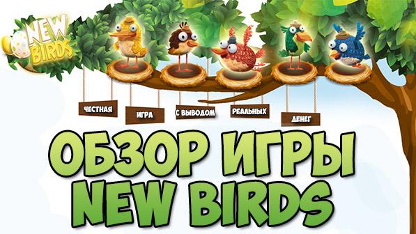 New Birds – честная игра с выводом денег без баллов